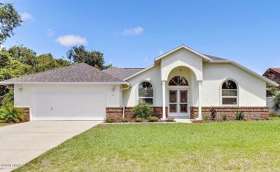 Palm Coast Single Family Home For Sale: 69 Franciscan Lane
