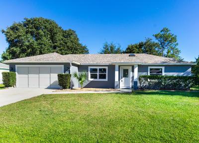 Palm Coast Single Family Home For Sale: 32 Pebble Stone Lane