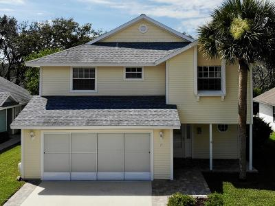 Palm Coast Single Family Home For Sale: 49 Bristol Lane