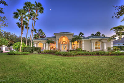 Spruce Creek Fly In Single Family Home For Sale: 1982 Southcreek Boulevard