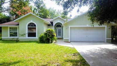Ormond Beach Single Family Home For Sale: 18 Lake Walden Trail
