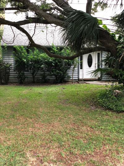 Ponce Inlet Single Family Home For Sale: 92 Buschman Drive Drive