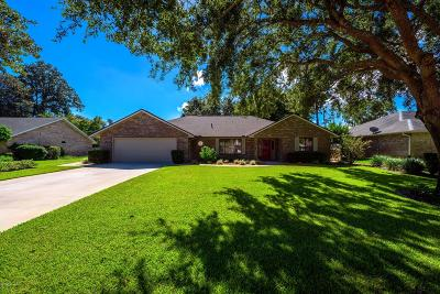Ormond Beach Single Family Home For Sale: 10 Fernery Trail