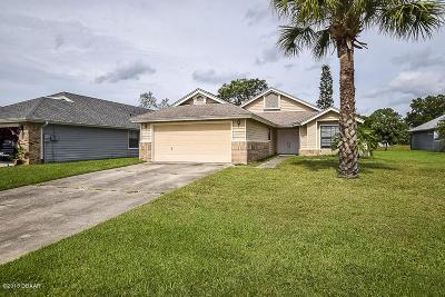Daytona Beach Single Family Home For Sale: 117 Wood Ibis Court