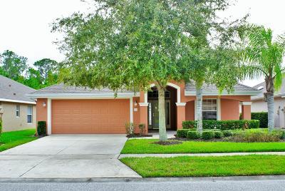 Port Orange Single Family Home For Sale: 1430 Areca Palm Drive
