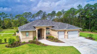 Ormond Beach Single Family Home For Sale: 746 Hope Street
