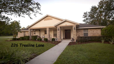 Ormond Beach Single Family Home For Sale: 226 Treeline Lane