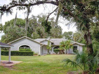 New Smyrna Beach Single Family Home For Sale: 633 Sapp Road