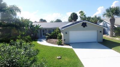 Ormond Beach Single Family Home For Sale: 10 W Sea Harbor Drive