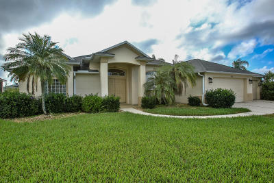 Port Orange Single Family Home For Sale: 6727 Ferri Circle