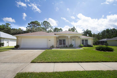 Ormond Beach Single Family Home For Sale: 36 Spring Meadows Drive
