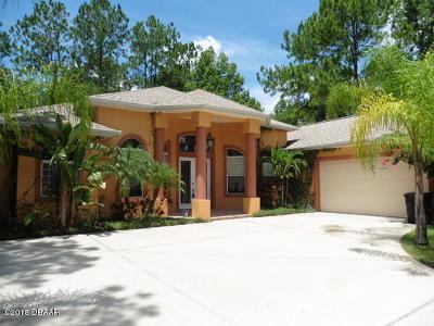 Palm Coast Single Family Home For Sale: 23 Woodbury Drive