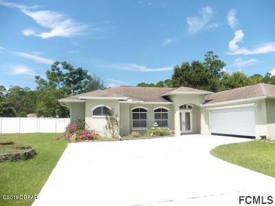 Palm Coast Single Family Home For Sale: 39 Bren Mar Lane