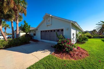 Palm Coast Single Family Home For Sale: 48 Medford Drive