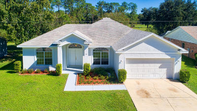 Palm Coast Single Family Home For Sale: 20 Westfield Lane