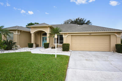 Port Orange Single Family Home For Sale: 6385 Longlake Drive