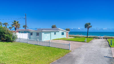 Ormond Beach Single Family Home For Sale: 8 Ocean View Drive