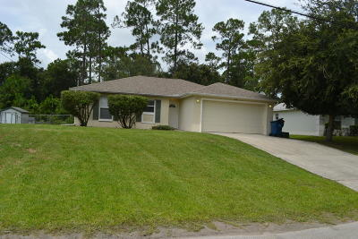 Daytona Beach Single Family Home For Sale: 1450 General McArthur Avenue
