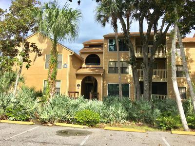Daytona Beach Condo/Townhouse For Sale: 1401 S Palmetto Avenue #302