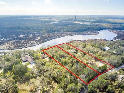 Spruce Creek, Spruce Creek Estates, Spruce Creek Farms, Spruce Creek Fly In, Spruce Creek Village Residential Lots & Land For Sale: 720 Pringle Road