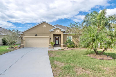 New Smyrna Beach Single Family Home For Sale: 740 Grape Ivy Lane