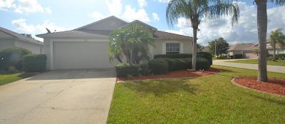 Daytona Beach Single Family Home For Sale: 101 Skyflower Circle