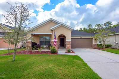 Daytona Beach Single Family Home For Sale: 309 Grande Lake Drive
