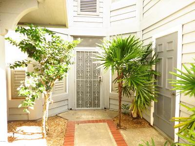 Ormond Beach Condo/Townhouse For Sale: 596 N Nova Road #307
