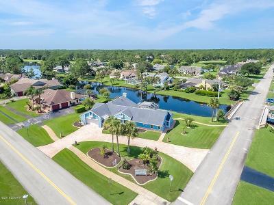 Daytona Beach Single Family Home For Sale: 785 Pelican Bay Drive