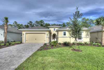 Ormond Beach Single Family Home For Sale: 910 Creekwood Drive