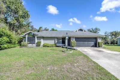 Deltona  Single Family Home For Sale: 878 Amidon Street