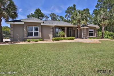 Ormond Beach Single Family Home For Sale: 42 Gale Lane