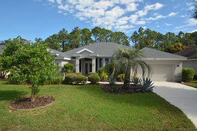 Ormond Beach Single Family Home For Sale: 36 Gale Lane