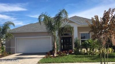New Smyrna Beach Single Family Home For Sale: 243 Venetian Palms Boulevard