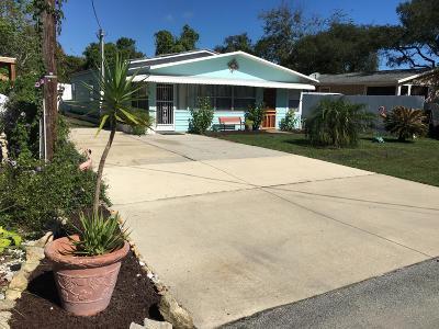 Palm Coast Single Family Home For Sale: 27 N Shady Lane