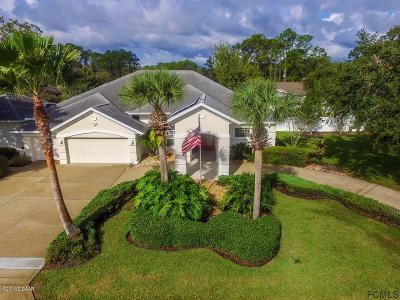 Palm Coast Single Family Home For Sale: 21 Webster Lane
