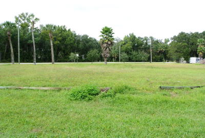 Volusia County Residential Lots & Land For Sale: 2185 Pioneer Trail