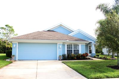 Port Orange Single Family Home For Sale: 1331 Coconut Palm Circle