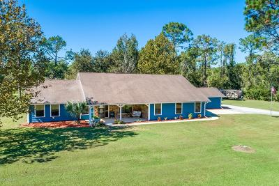 Ormond Beach Single Family Home For Sale: 31 Winchester Road
