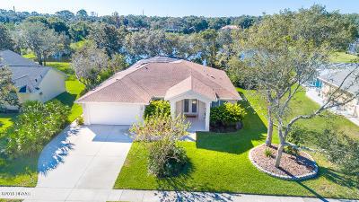 Port Orange Single Family Home For Sale: 520 Moon Rise Drive