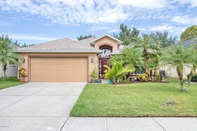 Port Orange Single Family Home For Sale: 6509 Shahab Lane