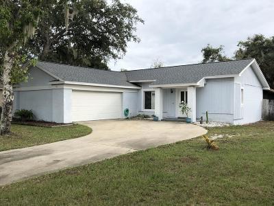 Port Orange Single Family Home For Sale: 706 Hawks Ridge Road