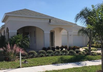 New Smyrna Beach Single Family Home For Sale: 247 Venetian Palms Boulevard
