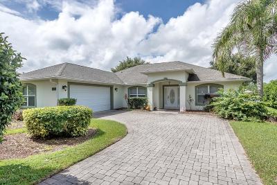 Port Orange Single Family Home For Sale: 4230 Hidden Lake Drive