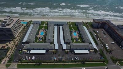 New Smyrna Beach Condo/Townhouse For Sale: 4225 S Atlantic Avenue #2100