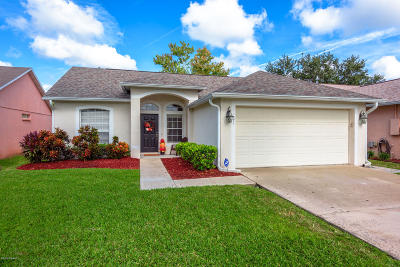 Port Orange Single Family Home For Sale: 1071 Horizon View Boulevard