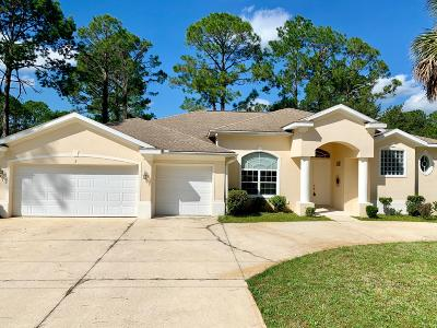 Palm Coast Single Family Home For Sale: 5 Burning Sands Lane
