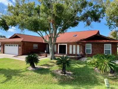 Palm Coast Single Family Home For Sale: 4 N Christopher Court