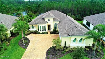 Ormond Beach Single Family Home For Sale: 640 Southlake Drive
