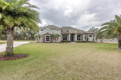 Port Orange Single Family Home For Sale: 764 Barrows Dairy Road